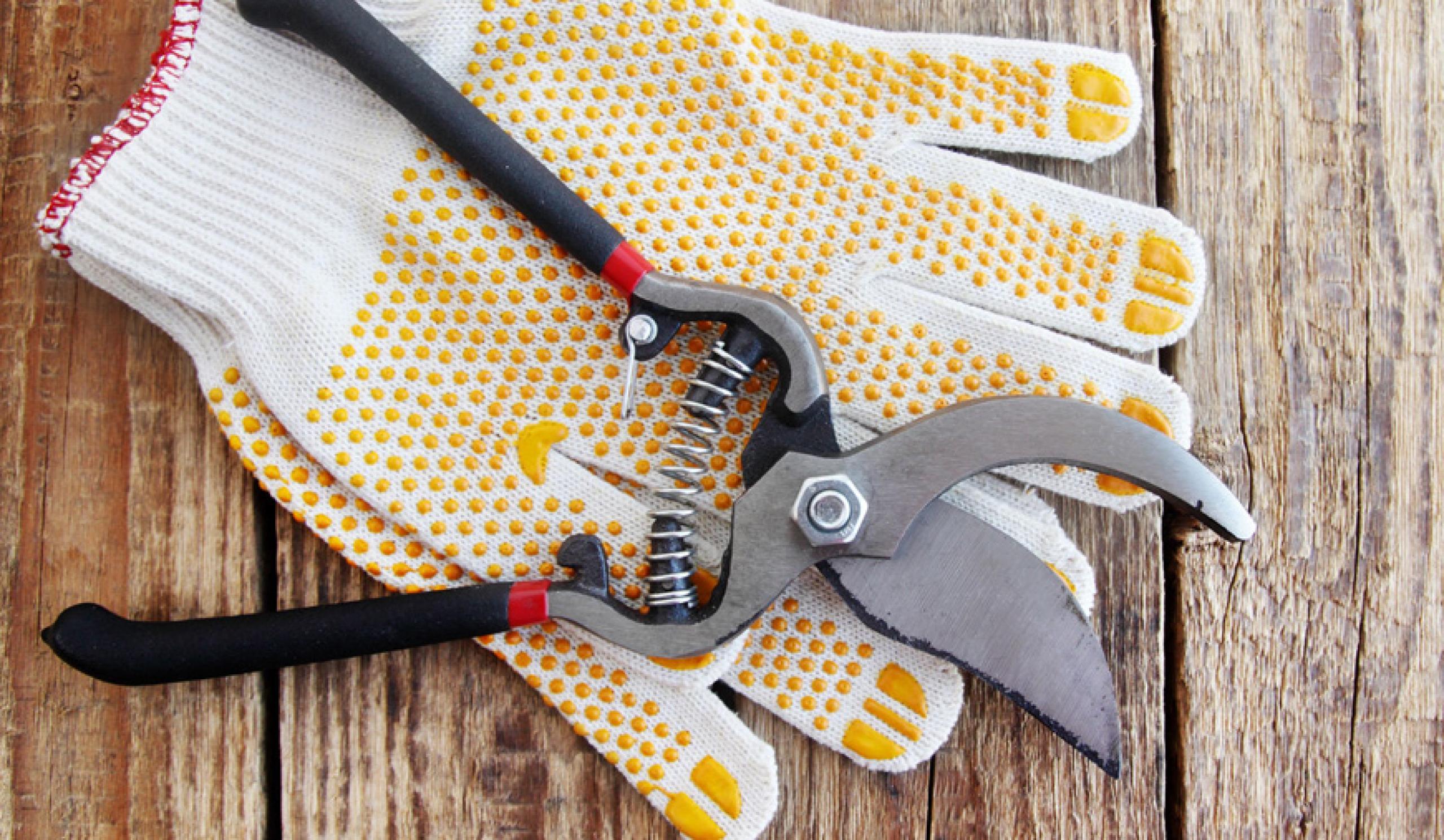 Kerti karbantartás és szabadtéri munkák